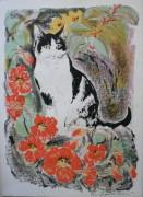 Cat and nasturtiums